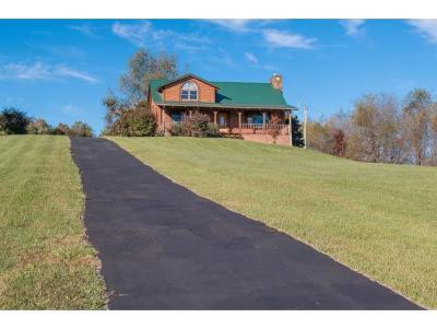 Abingdon Single Family Home For Sale: 15285 Peaceful Valley Road