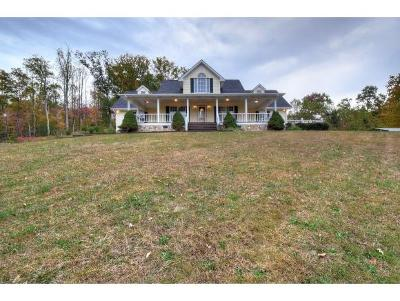 Elizabethton Single Family Home For Sale: 132 Shalom