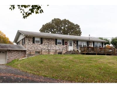 Blountville Single Family Home For Sale: 314 Neeley Lane