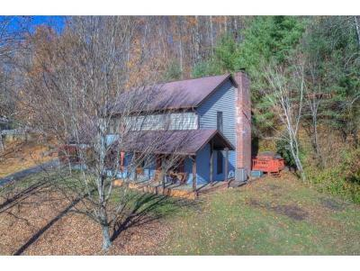 Blountville Single Family Home For Sale: 321 Greentree Dr