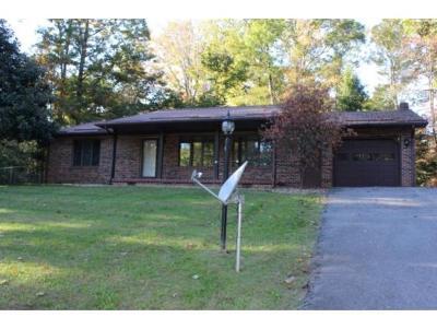 Abingdon Single Family Home For Sale: 17183 Dogwood Drive