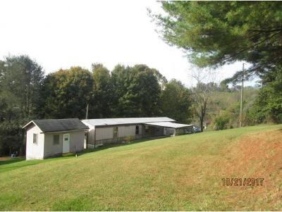 Bristol VA Single Family Home For Sale: $27,900