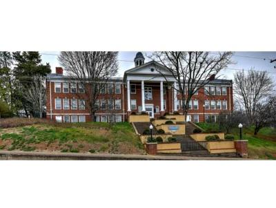 Jonesborough Condo/Townhouse For Sale: 312 W Main Street #5