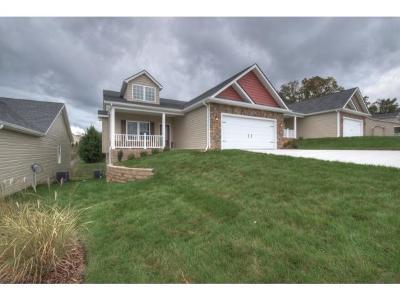 Gray Single Family Home For Sale: 157 Piper Glen