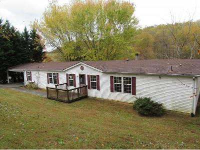 Blountville Single Family Home For Sale: 348 Highland Meadows Drive
