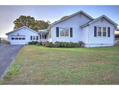 Single Family Home For Sale: 328 Holston Drive
