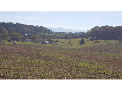 Greene County Residential Lots & Land For Sale: 1825 Happy Valley Road