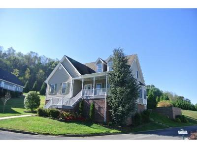 Bristol VA Single Family Home For Sale: $298,500