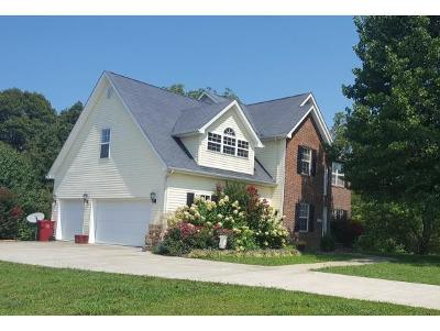 Johnson City Single Family Home For Sale: 47 Singletree Ct.