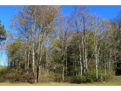 Unicoi Residential Lots & Land For Sale: TR 2 Sciota Road