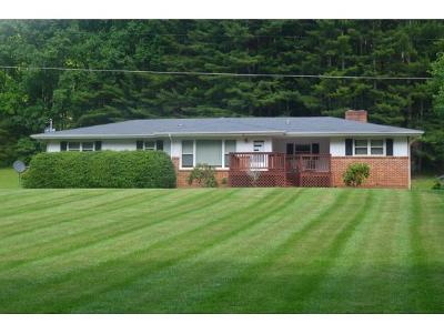 Roan Mountain Single Family Home For Sale: 385 Heaton Creek Road