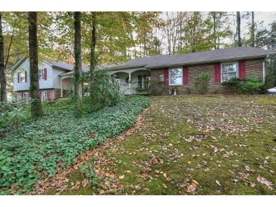 Erwin Single Family Home For Sale: 916 Laurel Avenue