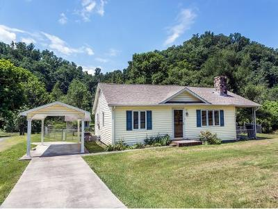 Bristol Single Family Home For Sale: 213 Belle Brook Road