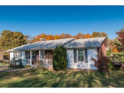 Blountville Single Family Home For Sale: 278 Fain Road
