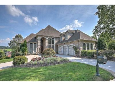 Jonesborough Single Family Home For Sale: 111 Laurel Ridge Drive