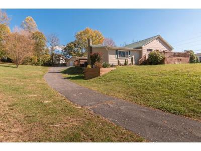 Bristol VA Single Family Home For Sale: $159,000