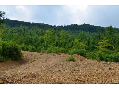 Residential Lots & Land For Sale: 434 ACRE Pressmens Home Rd