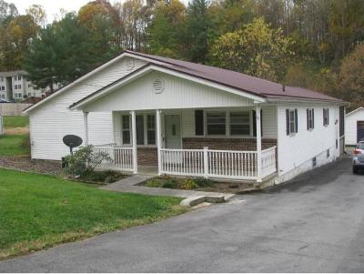 Bristol VA Single Family Home For Sale: $87,500