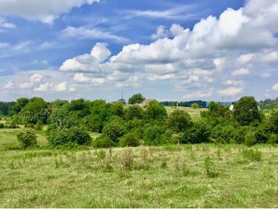 Washington-Tn County Residential Lots & Land For Sale: 125 Buffalo Ridge Road
