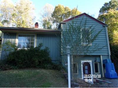 Jonesborough Single Family Home For Sale: 505 Pine St