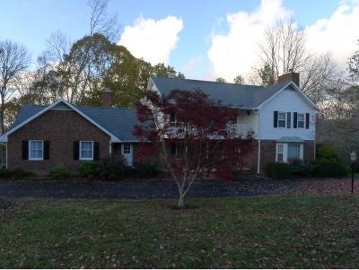 Kingsport Single Family Home For Sale: 3740 Arrowhead Trail