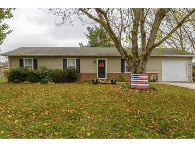 Abingdon Single Family Home For Sale: 1086 Hillview Dr.