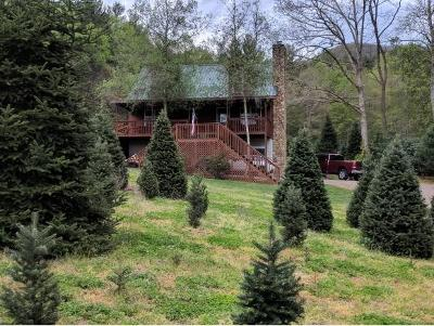 Mountain City Single Family Home For Sale: 313 Stage Coach Loop