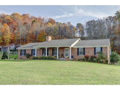 Blountville Single Family Home For Sale: 760 Harr Town Rd