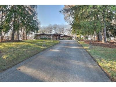 Kingsport Single Family Home For Sale: 725 Fleetwood Drive