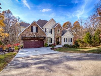 Blountville Single Family Home For Sale: 128 Southridge
