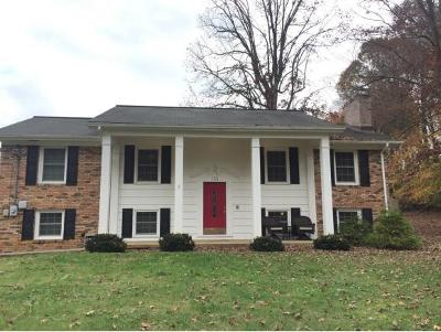 Johnson City Single Family Home For Sale: 103 Forest Street