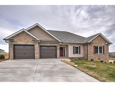 Jonesborough Single Family Home For Sale: 1359 Peaceful Drive