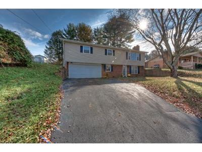 Bristol VA Single Family Home For Sale: $149,985
