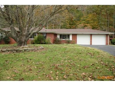 Rogersville Single Family Home For Sale: 1722 Pressmens Home Road