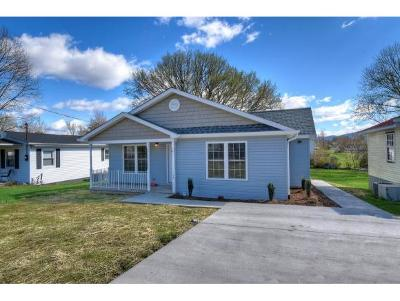 Elizabethton Single Family Home For Sale: 722 South Watauga Avenue