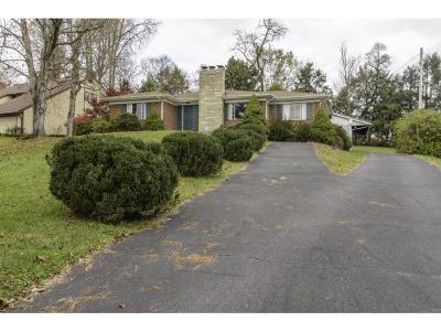 Bristol Single Family Home For Sale: 1774 Overhill Rd.