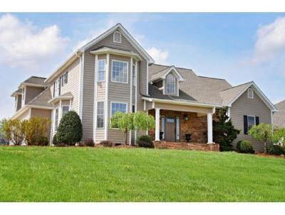 Blountville Single Family Home For Sale: 133 Grande Harbor Way