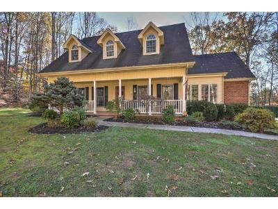 Piney Flats Single Family Home For Sale: 441 Lake Drive