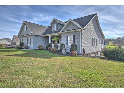 Blountville Single Family Home For Sale: 221 Sunnyfield