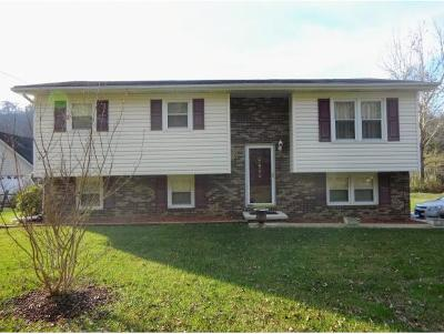 Elizabethton Single Family Home For Sale: 1268 Gap Creek Rd.