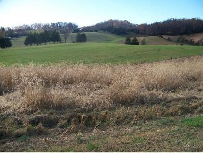 Piney Flats Residential Lots & Land For Sale: 796 Deerlick Rd.
