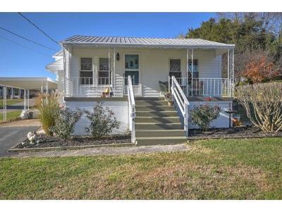 Greeneville Single Family Home For Sale: 314 Bird Circle