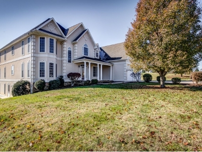 Blountville Single Family Home For Sale: 140 Barefoot Landing