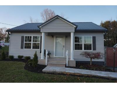 Bristol VA Single Family Home For Sale: $97,500