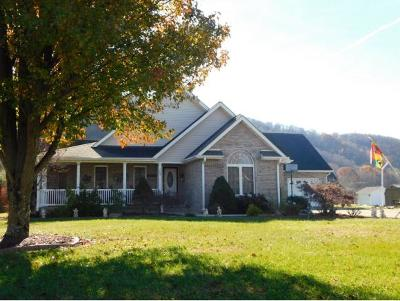Elizabethton Single Family Home For Sale: 103 Tad Lincoln Court