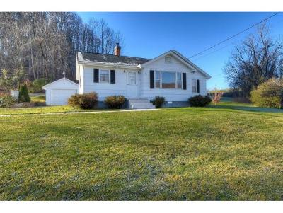 Elizabethton Single Family Home For Sale: 142 Liberty Hollow Road