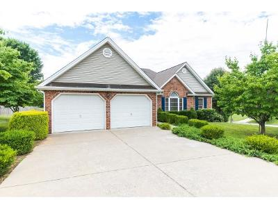 Bluff City Single Family Home For Sale: 304 Nicole Lane