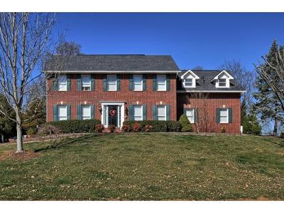Blountville Single Family Home For Sale: 421 Dunwoody