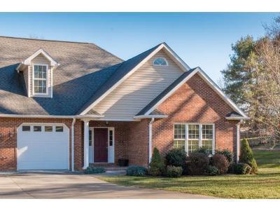 Bristol Single Family Home For Sale: 304 Redstone Drive