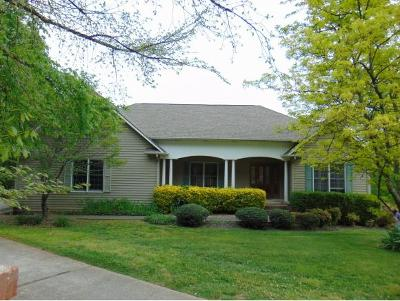 Rogersville Single Family Home For Sale: 136 Spindletop Dr